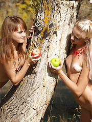 Two cute teen babes fooling around with each other and exposing their gorgeous nude bodies.